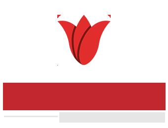 Skinovation